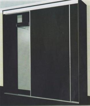 Шкаф-купе двухдверный 2000/450/2100